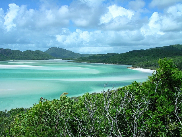 whitsunday islands where to go when studying abroad australia